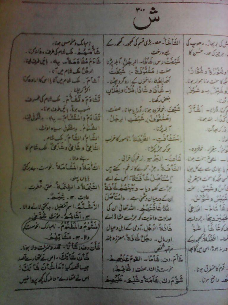mishaim / meshaim name meaning in urdu مشائمBest About