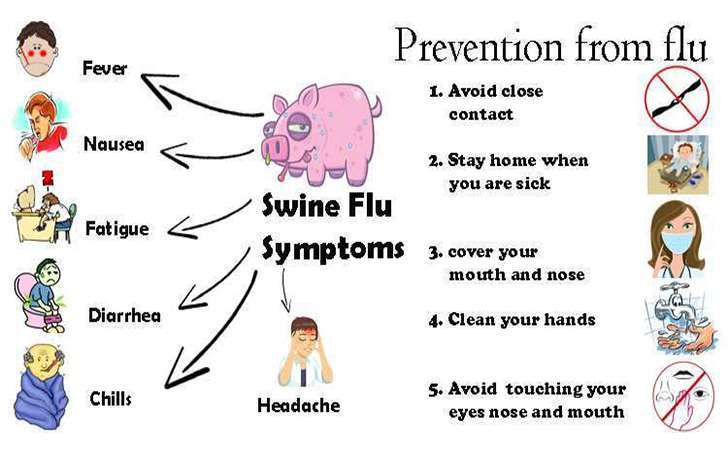 Photo of Swine flu in Pakistan: What are the symptoms, how does it spread? Ways to prevent it