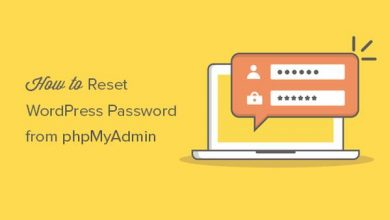 Photo of Reset C-Pannel FTP and Wordpress Password